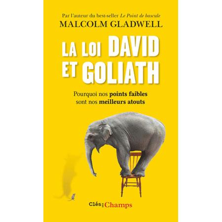 livre la loi de david et goliath